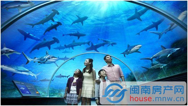 壁纸 海底 海底世界 海洋馆 水族馆 650_367
