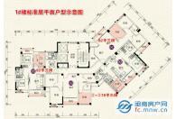1#楼标准层平面户型图
