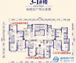 3-1#123/127/143平三房-四房